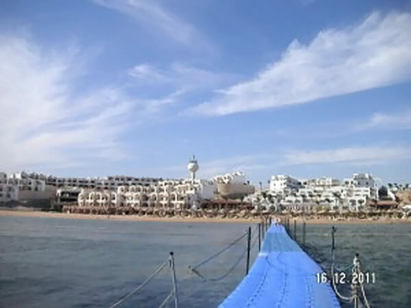 Отели Египта. Coral Beach Rotana Montazah