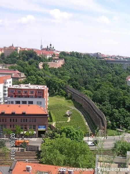 progulka-po-viyshegradu