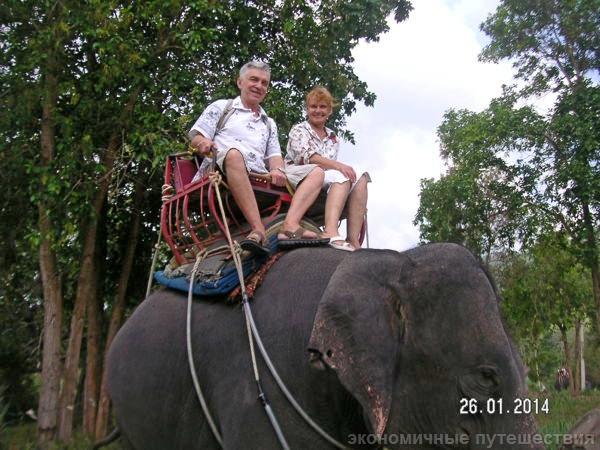 в седле на слоне