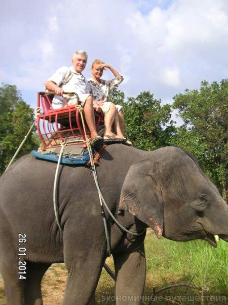 туристы на экскурсии в джунглях