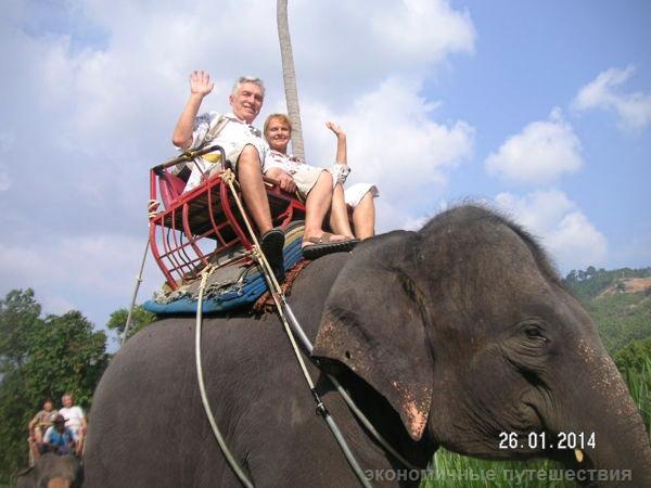привет со слона