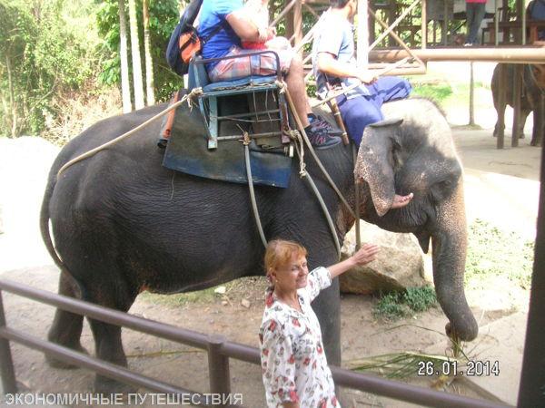 verhom-na-slone-2